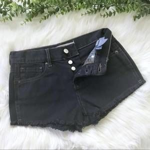 Brandy Melville High Rise Festival Cutoff Shorts